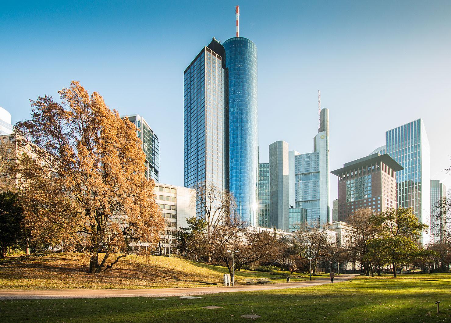 Skyline Frankfurt Park