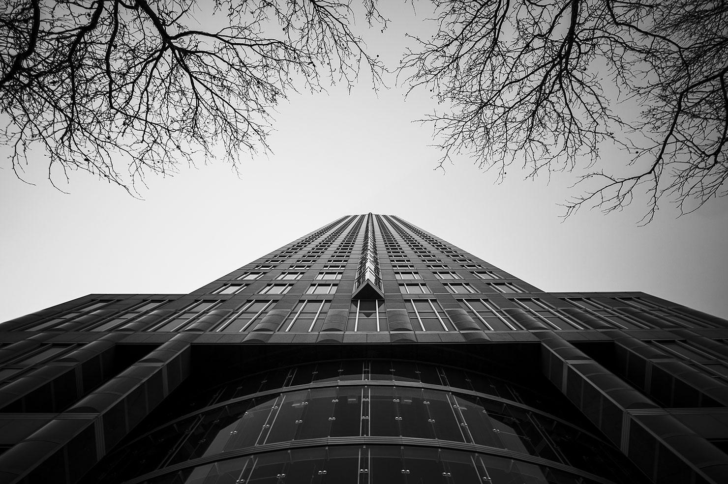Messeturm Frankfurt im Winter
